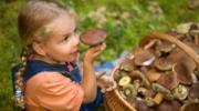 Отравления грибами в Измаиле: есть летальный случай