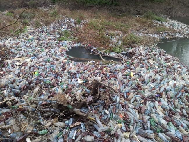 Спасти водный мир от пластика - в силах каждого из нас