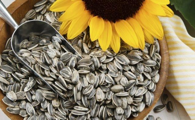 Ученые выяснили правду о влиянии семечек на аппендицит