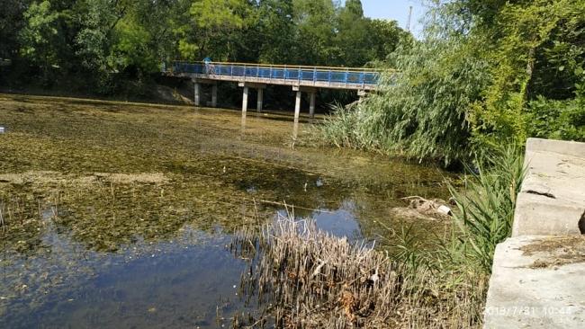 Спасение городского пруда Килии