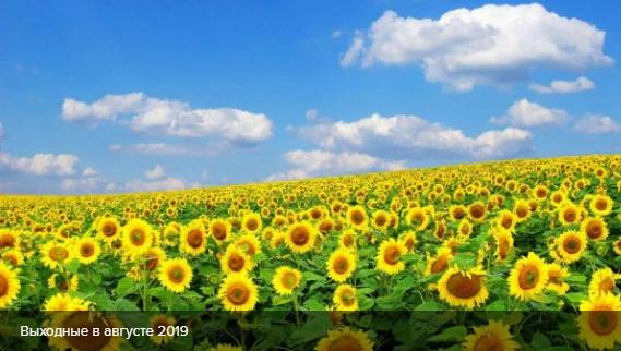 Выходные в августе: как будут отдыхать украинцы на День Независимости Украины