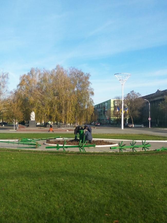 На главной площади начата установка городской ёлки