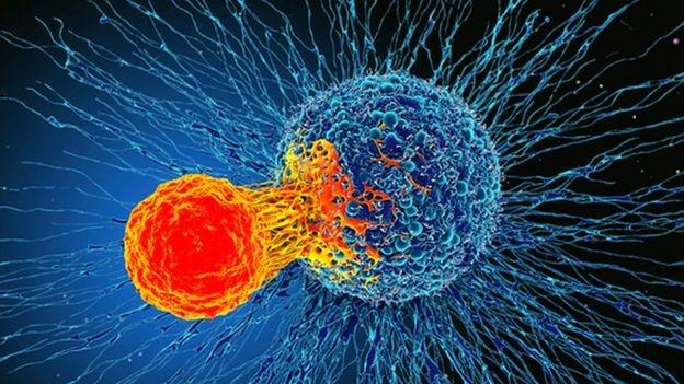 Новое открытие британских учёных поможет в лечении всех видов рака