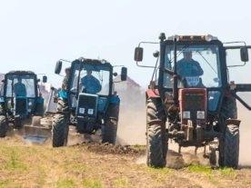Фермеры из села Приморское помогли проложить 5 км дороги к Тузловской Амазонии
