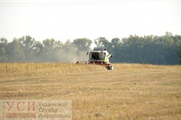Одесские аграрии просят объявить чрезвычайную ситуацию
