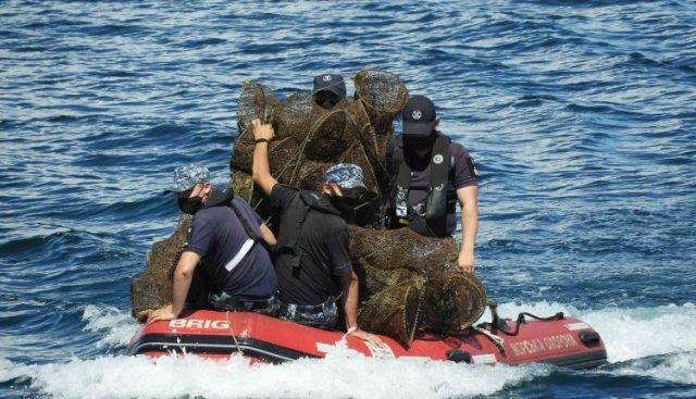 Одесские пограничники спасли краснокнижных морских обитателей