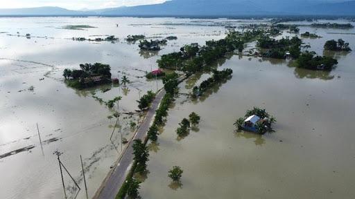 В Южной Корее из-за дождей и оползней погибли люди