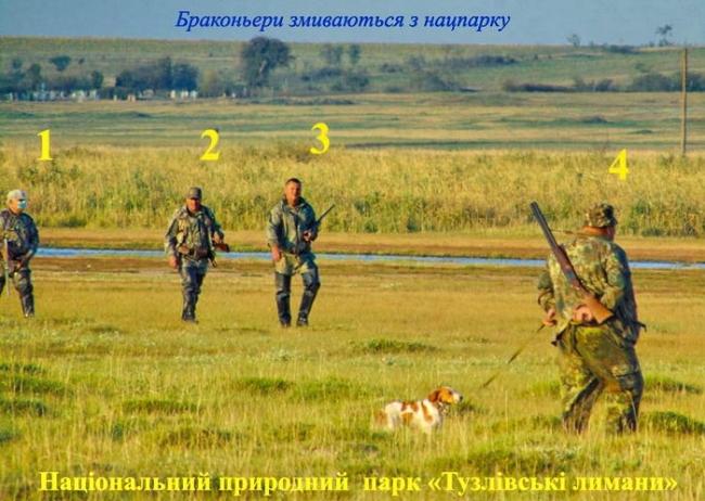 """В заповеднике """"Тузловские лиманы"""" браконьеры стреляли в краснокнижных ибисов"""