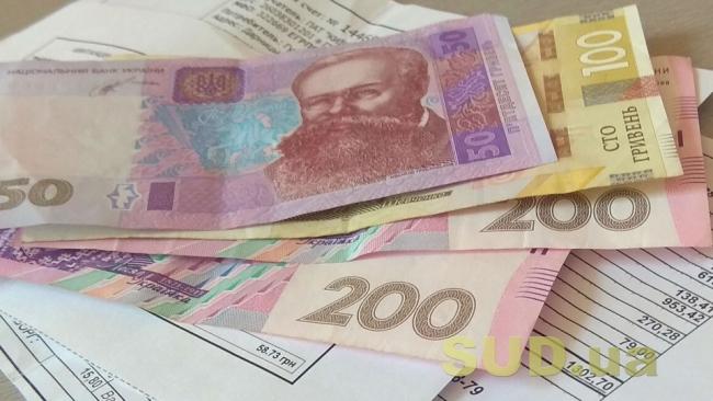 Субсидии в Украине: получателей ждут тотальные проверки