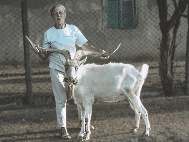 Чудо рогатое: козёл из Першотравневого стал национальным рекордсменом!