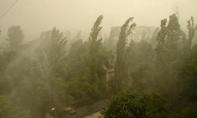 Пыльные бури в Украине: климатолог объяснила, откуда они берутся