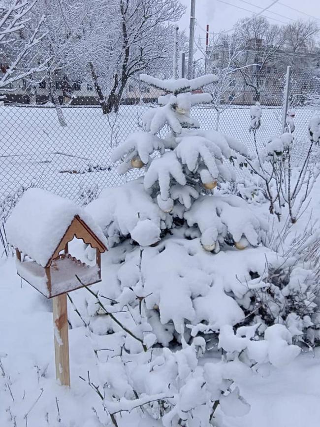 Недолгая зимняя сказка по-измаильски
