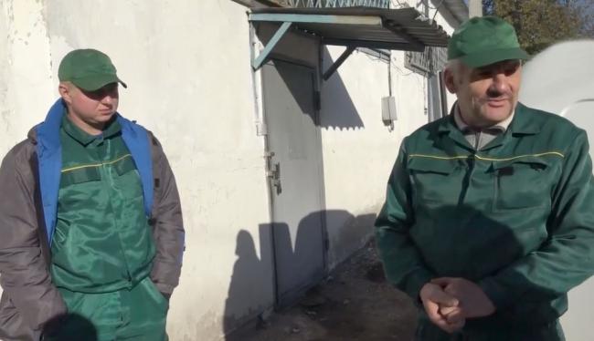 Сын и отец из Харьковской области готовятся стерилизовать измаильских бездомных собак