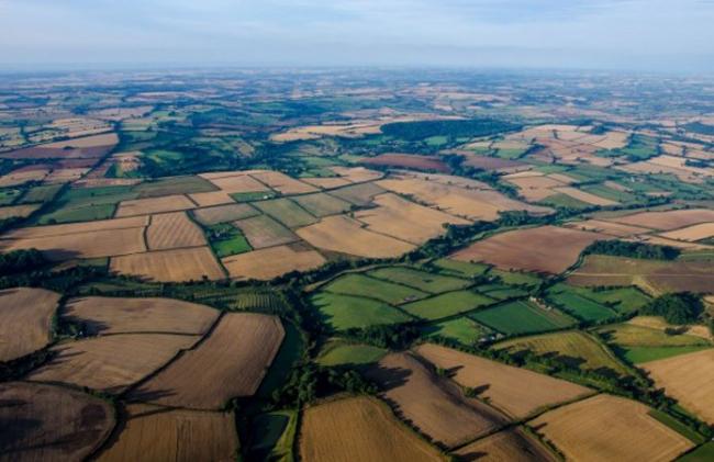 Две трети украинских земель могут скоро обесцениться